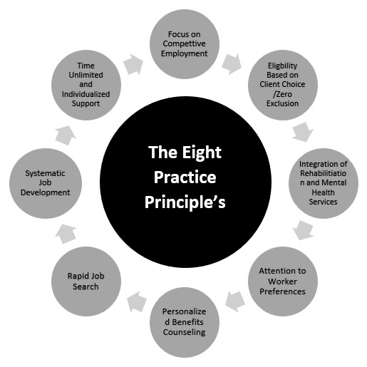 the eight practice principles